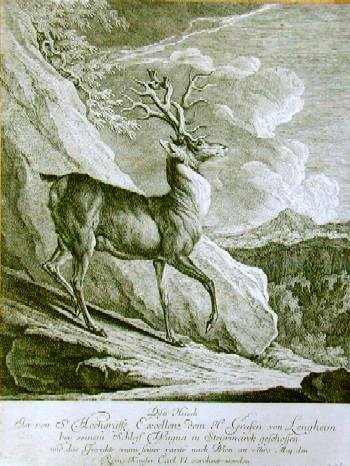 Ridinger J. Dieser Hirsch ist von Sir Hochgräffe Excellence dem Hr. Grafen von Lengheim bey seinem Schloß Wagna in Steyrmark geschossen