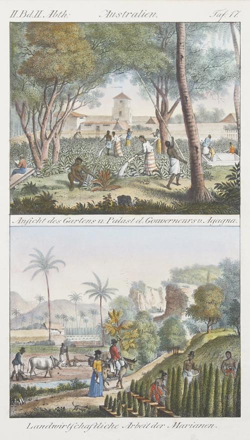 Anonymus  Australien. Ansicht des Gartens u. Palast d. Gouverneurs v. Agagna/ Landwirtschaftliche Arbeit der Marianen