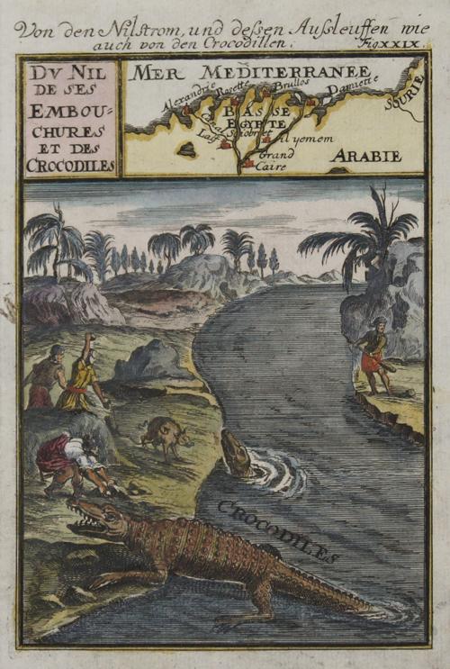 Mallet Alain Manesson Von den Nilstrom, und dessen Aussleuffen wie auch von den Crocodillen. / Du Nil de ses Embouchures et des Crocodiles