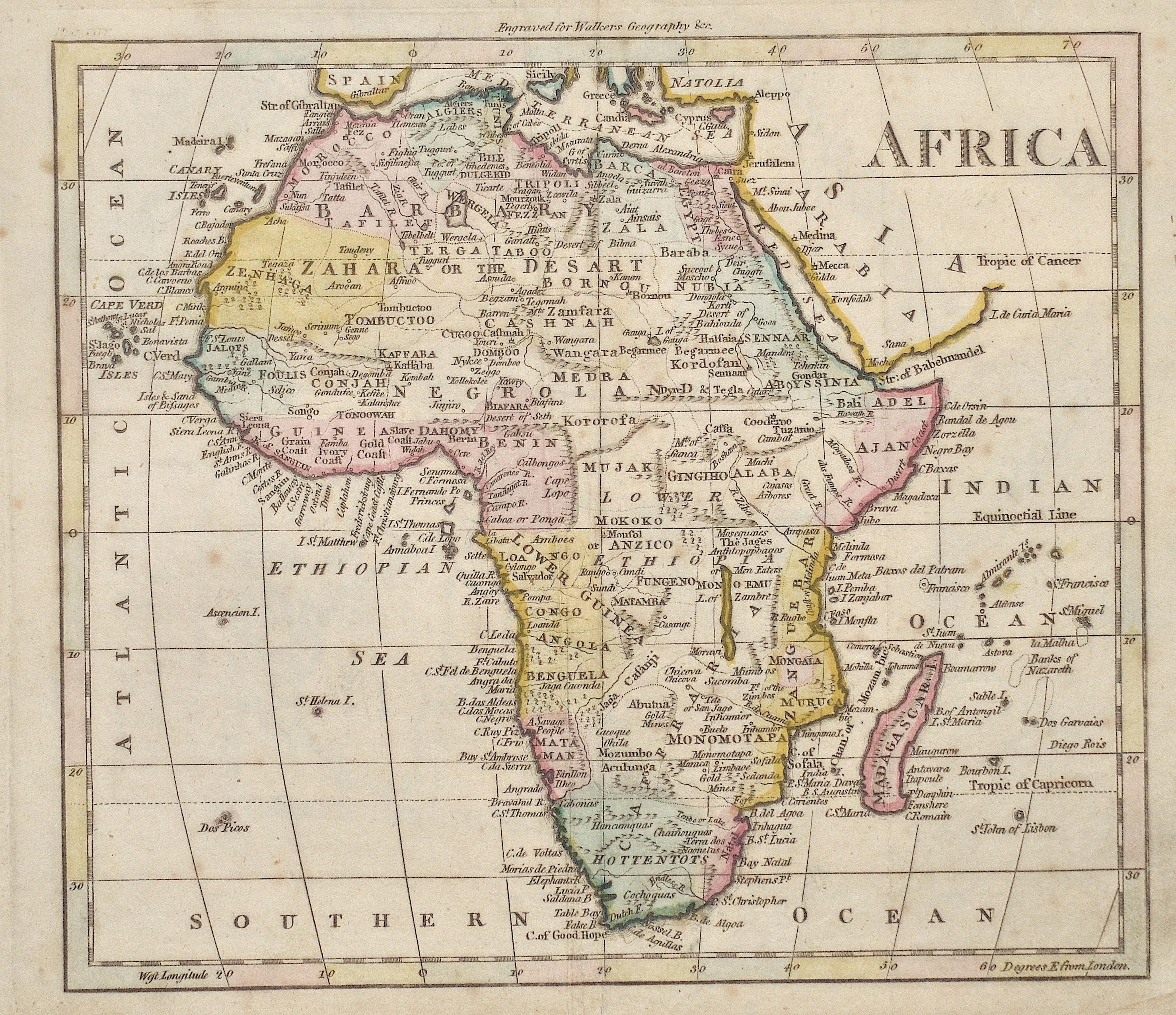 Walker  Africa