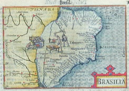 Bertius  Brasilia
