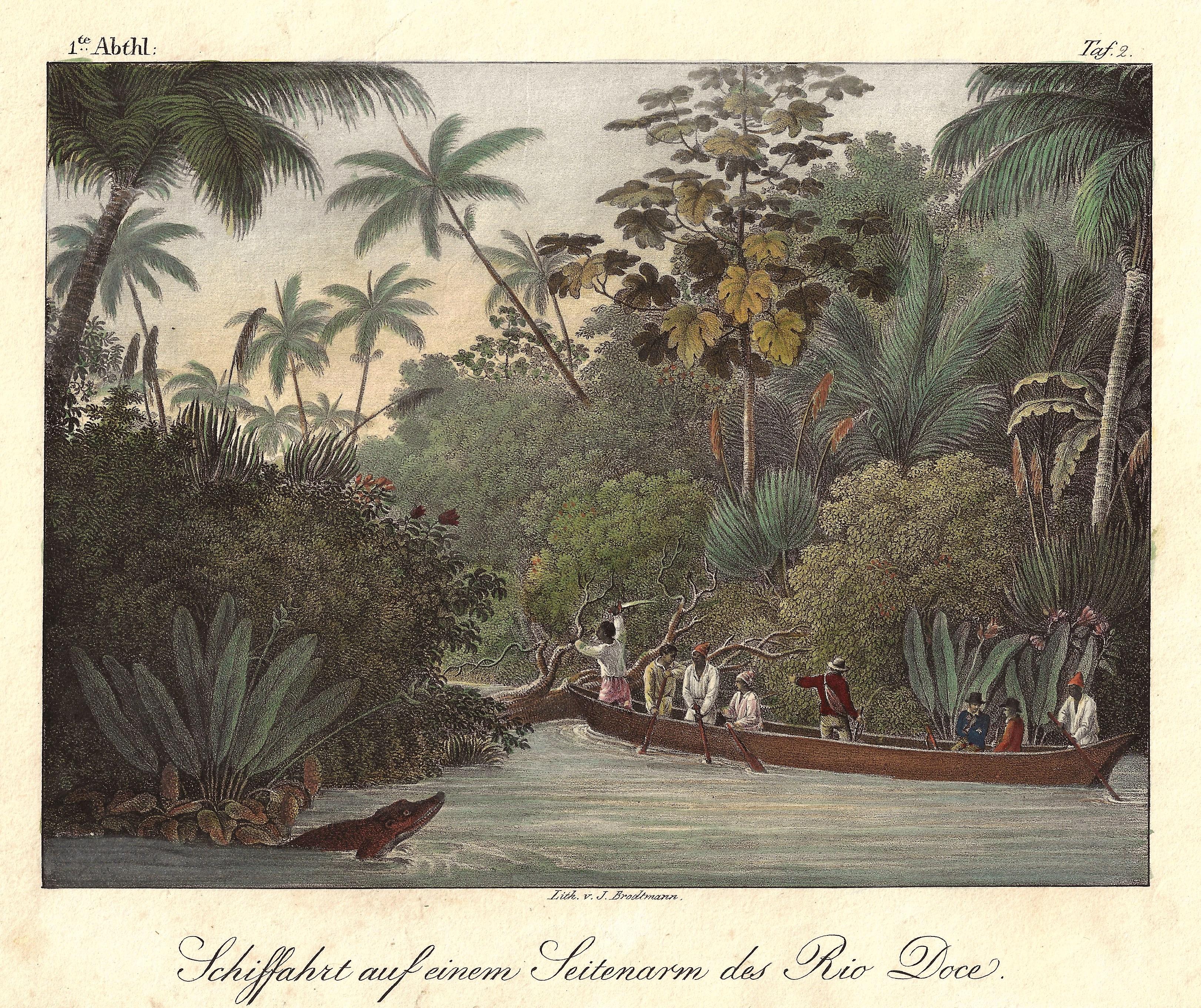 Brodtmann Karl Joseph Schiffahrt auf einem Seitenarm des Rio Doce.