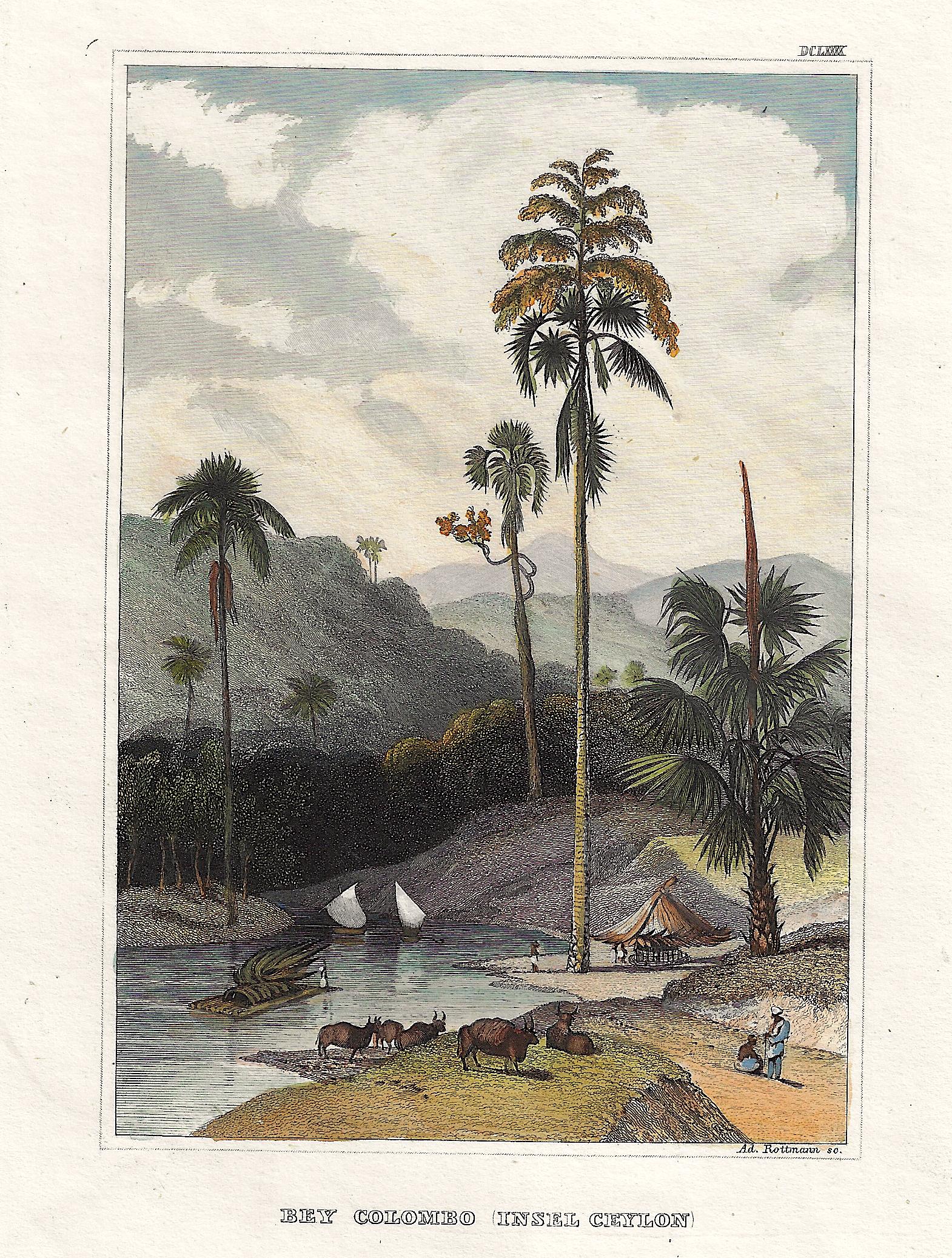 Kunstanstalt Hildburghausen  Bey Colombo (Insel Ceylon)