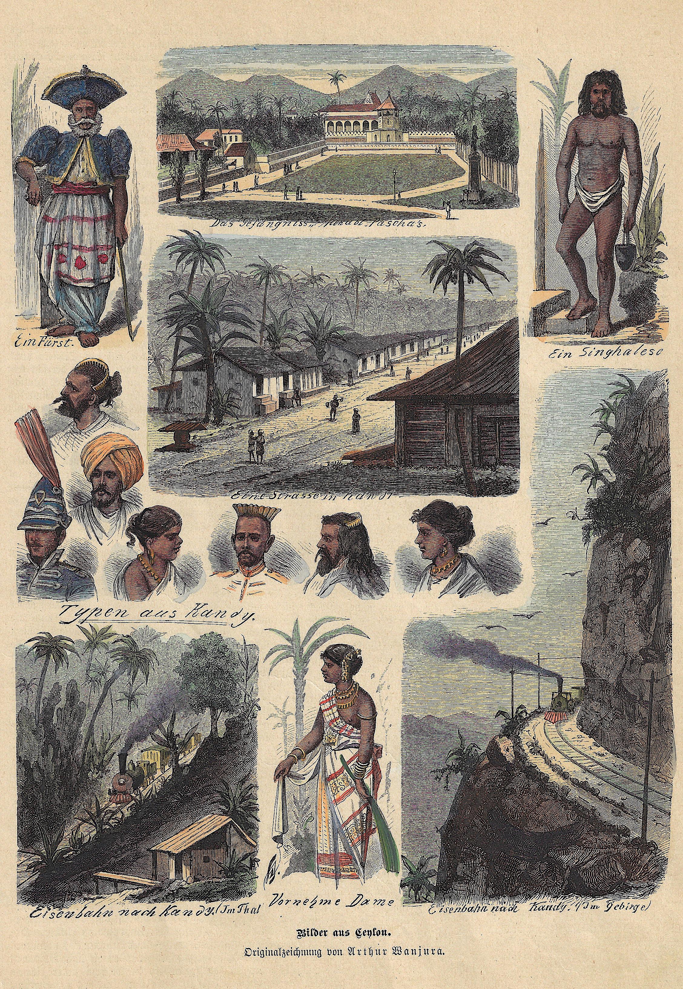 Anonymus  Bilder aus Ceylon.