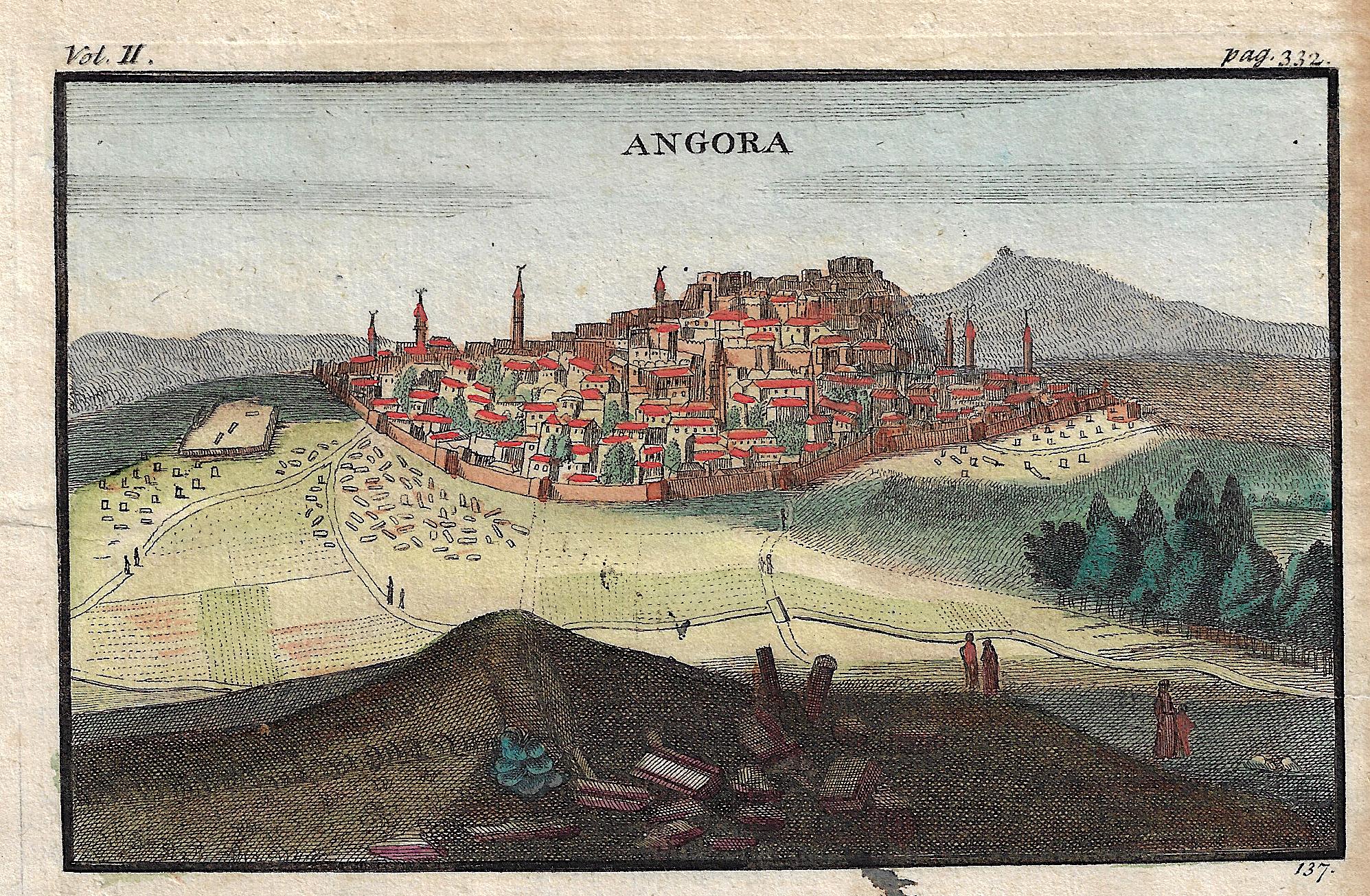 Anonymus  Angora