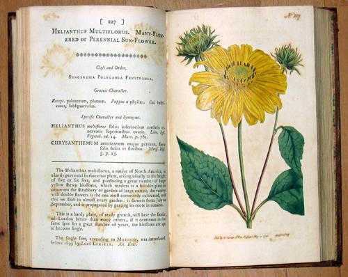 Curtis W. The botanical magazine or Flower – Garden Displayed