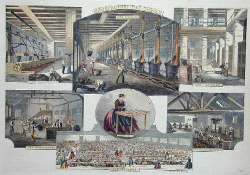 Bourdelin E. Manufakture des Tabacs