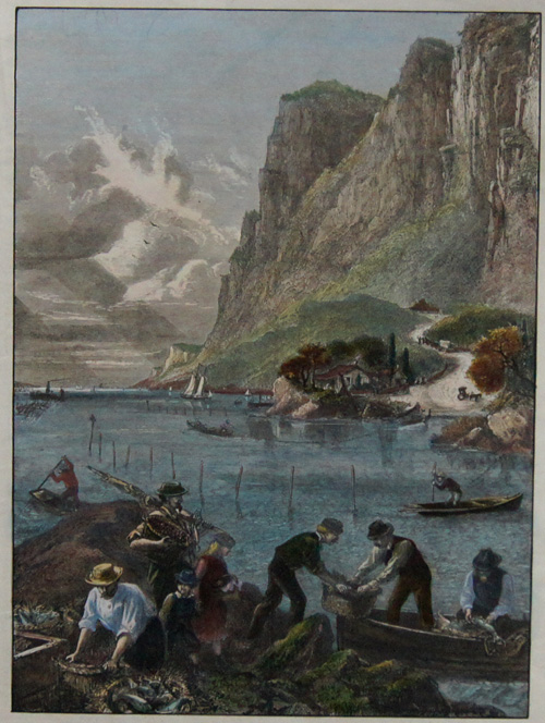 Linton H. American scetches: Shad – fishing on the Hudson