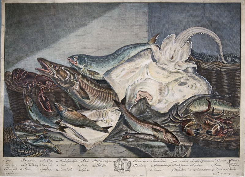Vandergucht  1. Ling. 2. Homelyn. 3 Allon fish. 4. Anchovies. 5. Cole Whiting. 6. Skate. 7. Sea Crab. 8. Cray fish…- 17. Baccha, Pupblished by John Boydell, London