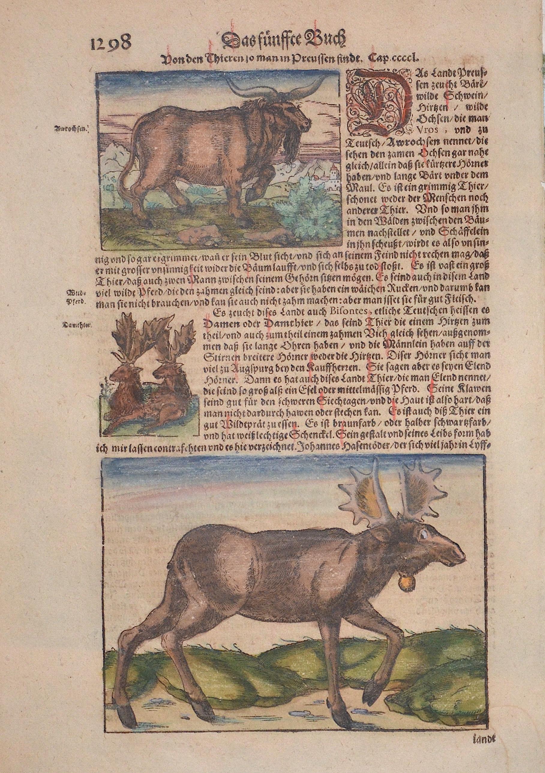Münster Sebastian Das fünffte Buch Von den Thieren so man in Preussen findt.