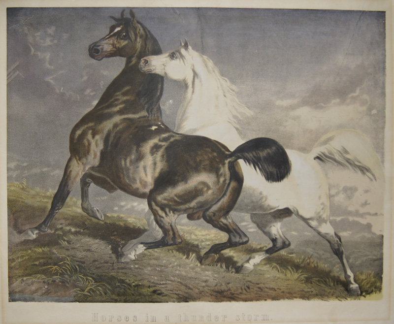 Anonymus  Horses in a thunder storm