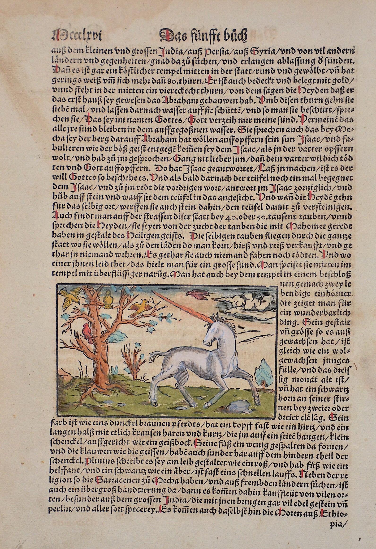 Münster  Das siebende Buch / Von den Länderen Asie. Von dem Edlen Arabia.