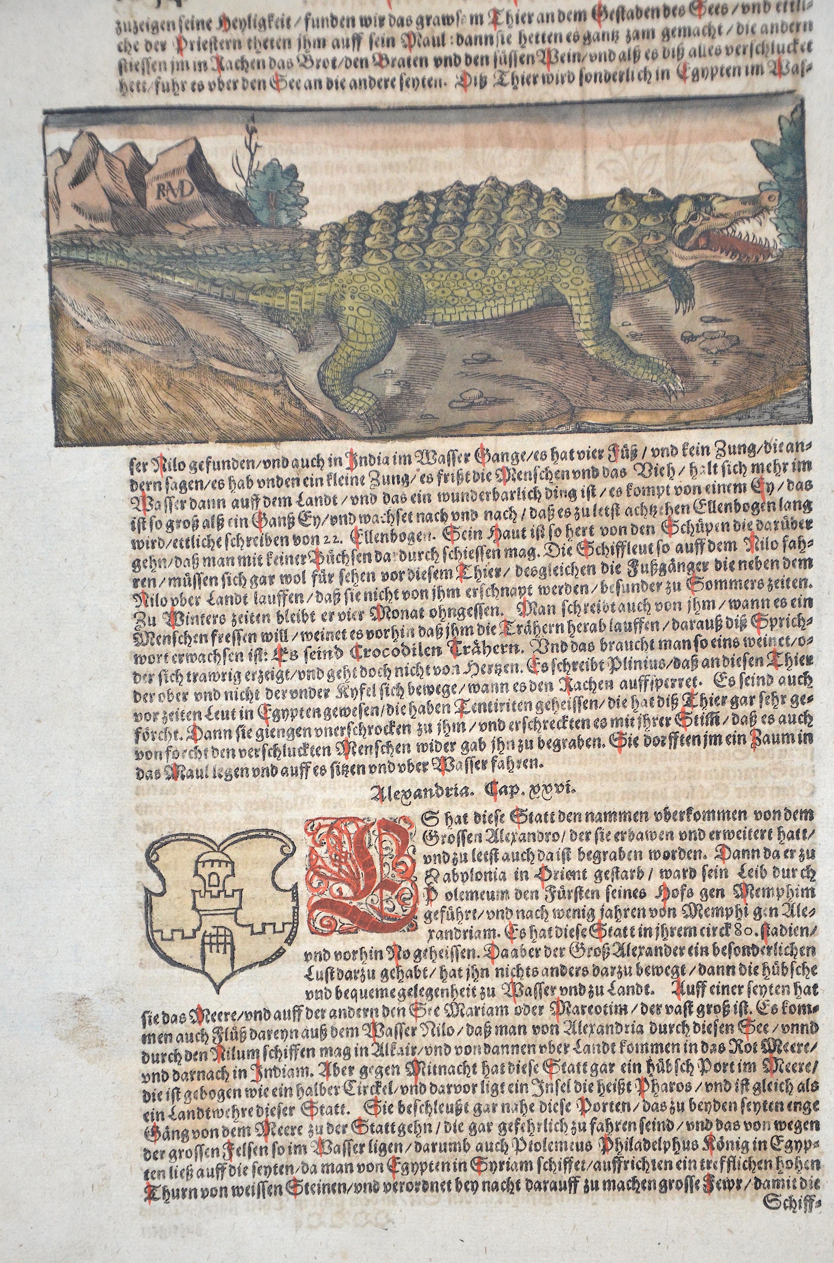 Münster Sebastian Das achte Buch