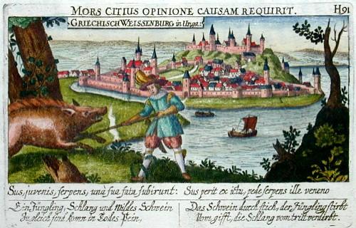 Meissner Daniel Mors citius opinione causam reqirit /Grischisch Weissenburg in Ungarn