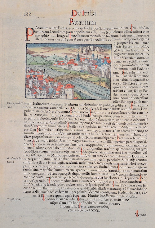Münster  De Italia Patauium