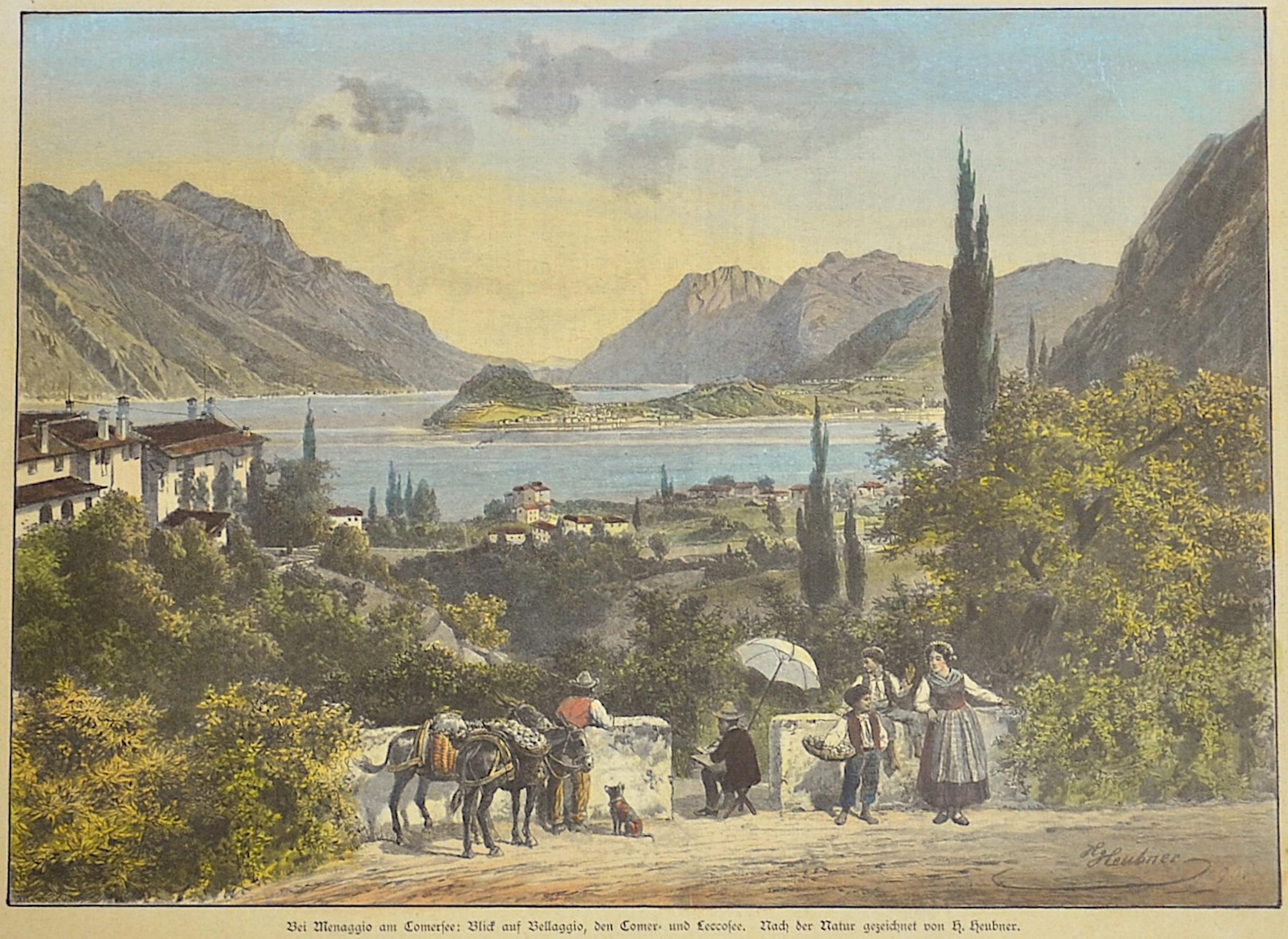 Heubner  Bei Menaggio am Comer See: Blick auf Bellaggio den Comer- und Lecco See
