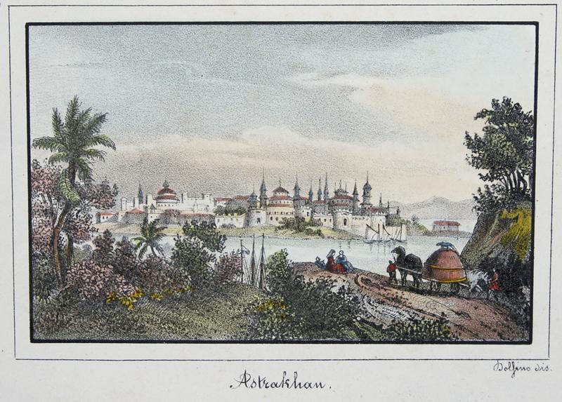 Dolfino  Astrakhan.