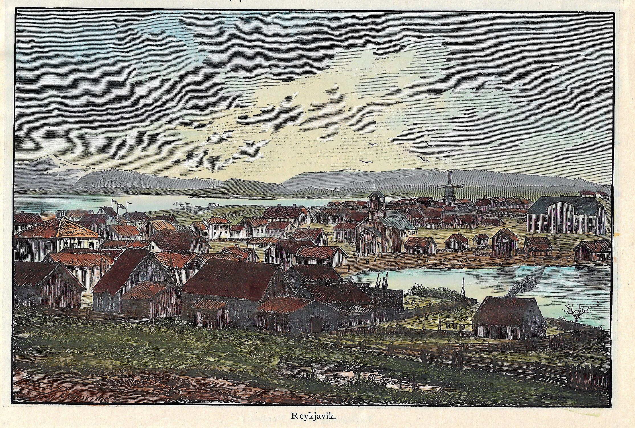 Petrovits E. Reykjavik.