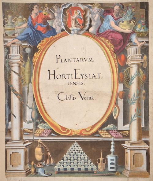 Besler Basilius Plantarum Horti Eystaettensis. Classis Verna.