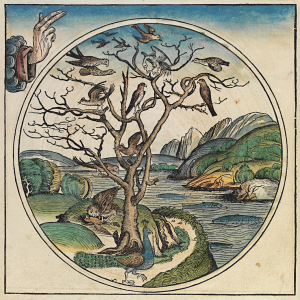 Image from the Nuremberg Chronicle (source: Wikipedia)